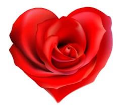 bigstockphoto_rose_heart_25472772
